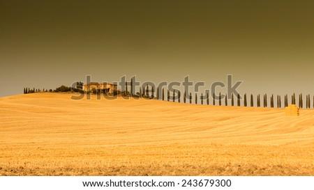 Maremma Toscana - stock photo