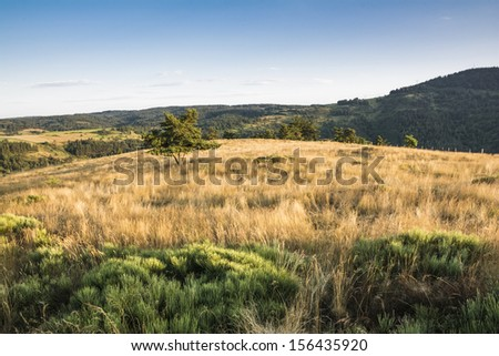 Margeride's plateau in the Lozere's scenic countryside - stock photo