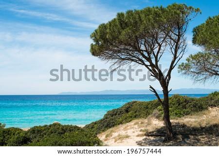 Mari Pintau beach along the coast of Cagliari, Sardinia, Italy - stock photo