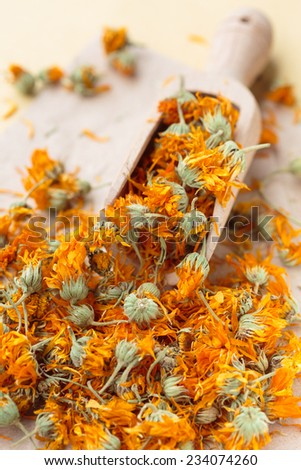 Marigold dried flowers in a scoop - stock photo