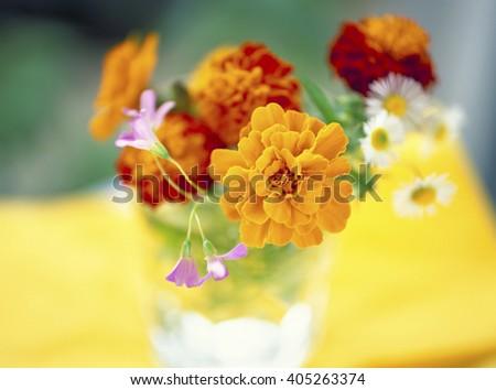Marigold flower arrangement - stock photo