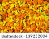 Marigold flowers garland background - stock photo