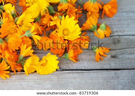marigold flowers over wooden background, autumn
