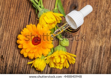 marigold herbal extract - stock photo