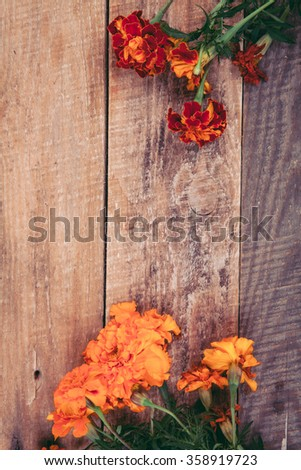 marigold on a wooden background