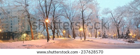 Mariinsky garden during inclement weather has its charm and Sharm glow lamps, soft snow- winding paths and roads - is a favorite place of citizens of the Ukrainian capital at all times of  the season