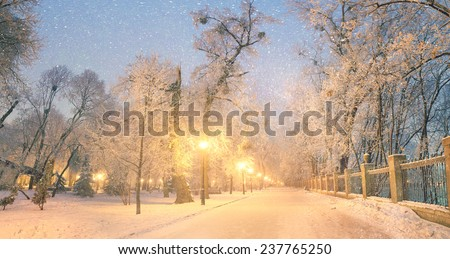 Mariinsky garden during inclement weather has its charm and Sharm glow lamps, soft snow- winding paths and roads - is a favorite place of citizens of the Ukrainian capital at all times  the season