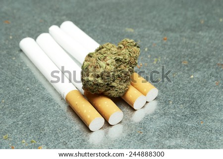 Marijuana and Tobacco Cigarettes  - stock photo