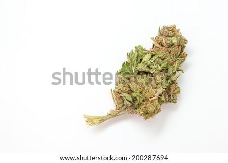 Marijuana bud - stock photo