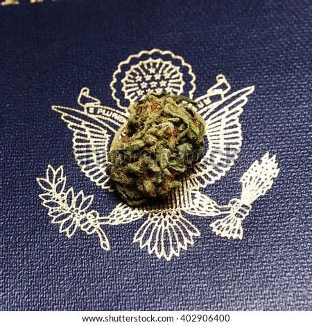 Marijuana Bud, Legal  - stock photo