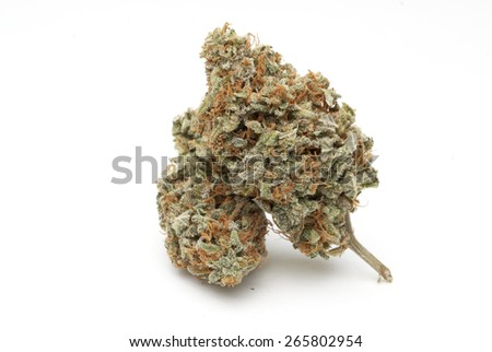 marijuana buds  - stock photo