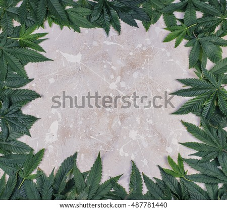 Marijuana frame with white blank space. Empty space inside green cannabis leaves.