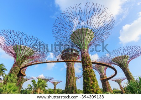 MARINA BAY, SINGAPORE - MAR 04, 2016: Supertree grove in garden by the bay, a popular destination in Singapore, SINGAPORE, on MAR 04, 2016 - stock photo