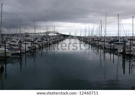 marina lines - stock photo