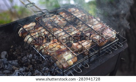 Marinaded chicken fried on coals barbeque food - stock photo