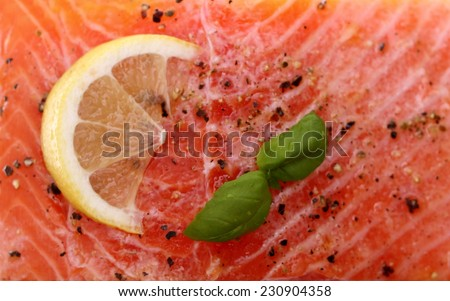 Marinated salmon fillet on grill, soft focus as background - stock photo