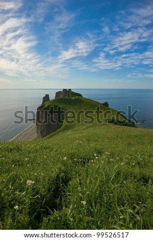 Marine afternoon landscape with high cliffs overgrown with thick grass. Japan Sea.