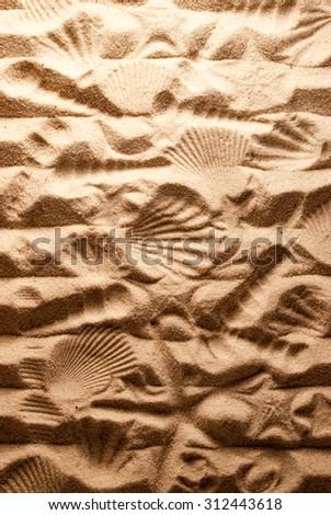Marine imprints on sandy background. - stock photo