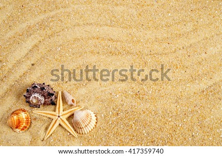 Marine life. Summer background. Holiday season. Summer background and marine life. Marine life card. Summer background with sand and shells.