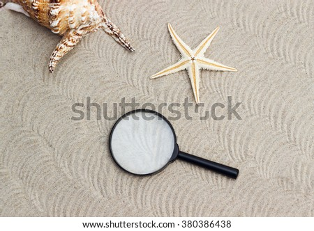 Marine theme. Magnifying glass and seashells in the sand