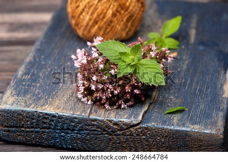 Marjoram Origanum vulgare and Mint - stock photo