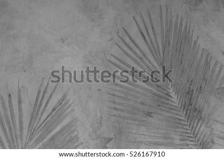 Mark palm leaf on cement texture background