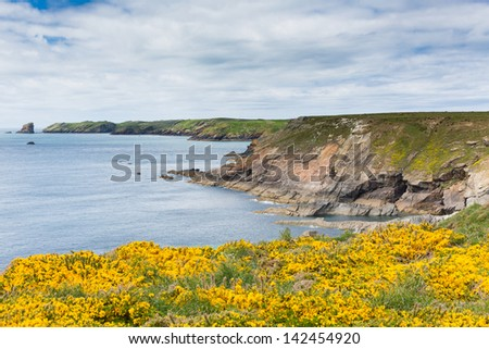 Marloes and St Brides bay West Wales coast near Skoma island.  If you miss the ferry to the island these views are found on the walk on the mainland
