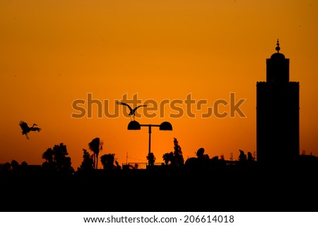 Maroc Marrakech sunset view with a stork silhouette - stock photo