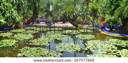 marrakech city morocco Majorelle Garden pond with lily