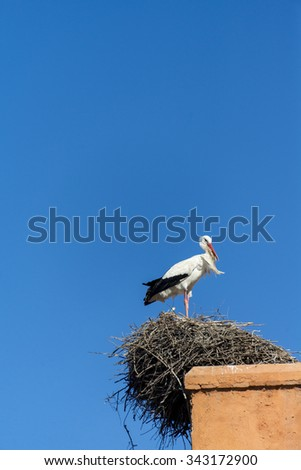 MARRAKESH, MOROCCO: city wall with Bab Agnaou and stork nests on wall - stock photo