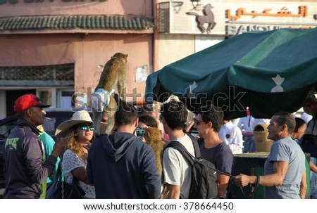 MARRAKESH, MOROCCO:  October, 9 Unknown tourists holding monkeys in the  busy Jemaa el Fna square in the old city of Marrakesh, Morocco on the 9th October, 2015. - stock photo