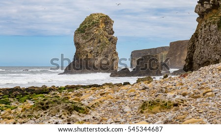 Marsden Bay, Tyne and Wear, UK