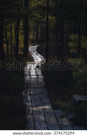 marsh footbridge - stock photo