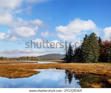 Marsh Land Surrounding The Marshall Brook, A Winding Waterway, Also Called Bass Harbor Marsh At Acadia National Park, Maine, USA - stock photo