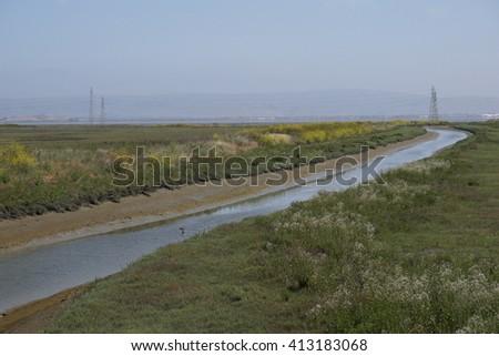 Marsh landscape, bay area, California - stock photo