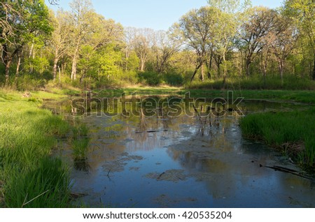 marshes and forest of battle creek regional park in saint paul minnesota during lush greenery of spring - stock photo