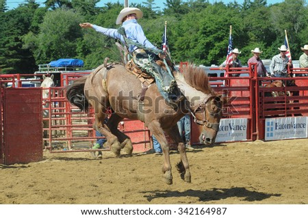 Bronc Stock Images Royalty Free Images Amp Vectors