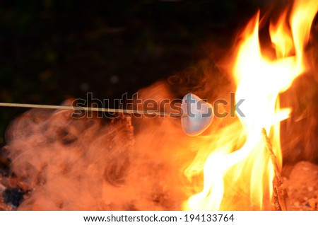 Marshmallow on long wooden stick roast on camp fire. - stock photo