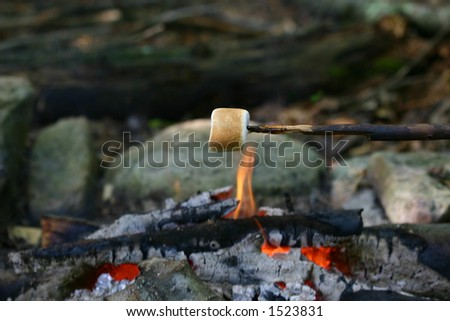 Marshmallow roasting over a campfire - stock photo