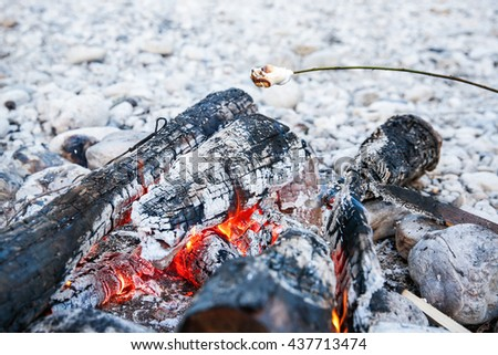Marshmallows sticked on a twig, being toasted on a self-made campfire, family spending quality time on an adventurous camping trip. Active natural lifestyle, fun family time concept.  - stock photo