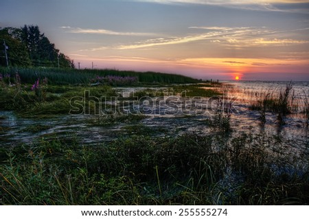 Marshy river side at calming sunset - stock photo