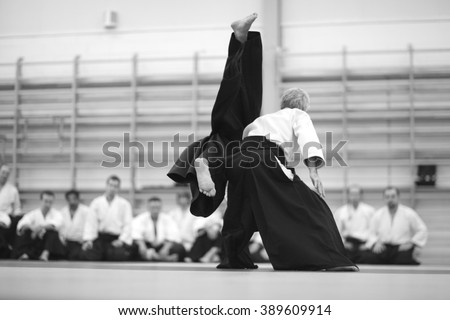 Martial arts demonstration - stock photo