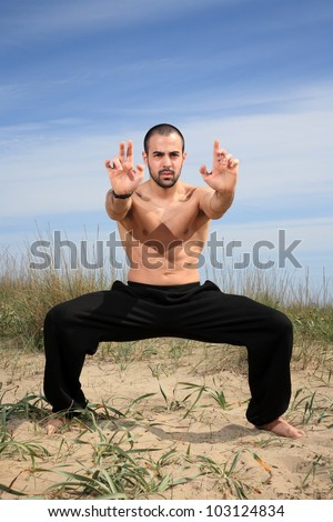 martial arts instructor exercising in the nature - stock photo