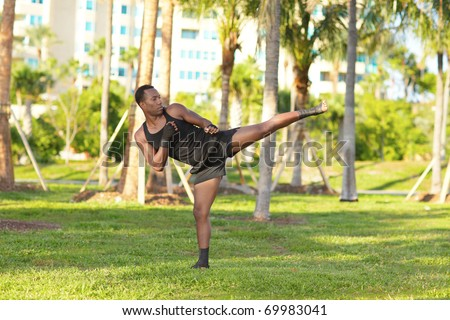Martial arts master practicing in the park