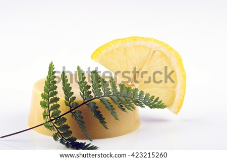 massage oil on a white background with a fern - stock photo