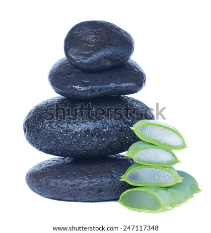 massage stones with aloe vera isolated on white background