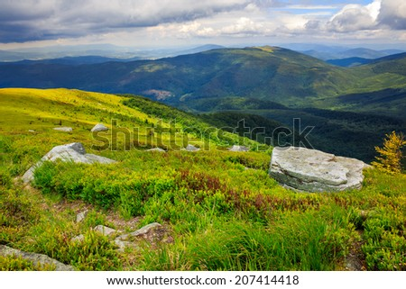 Massive boulders among wild plants on the hillside in high mountains - stock photo