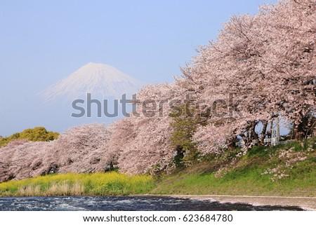 River Dike Stock Images RoyaltyFree Images Vectors Shutterstock - A long river