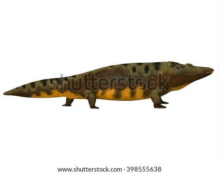 Mastodonsaurus Side Profile 3D illustration - Mastodonsaurus was an aquatic amphibian animal that lived in Europe during the Triassic Period. - stock photo