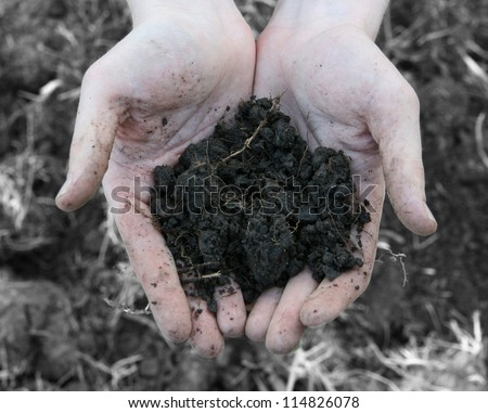 Material for mineral on farmer hand - stock photo